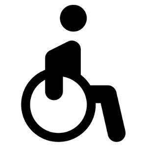 disability 300x300